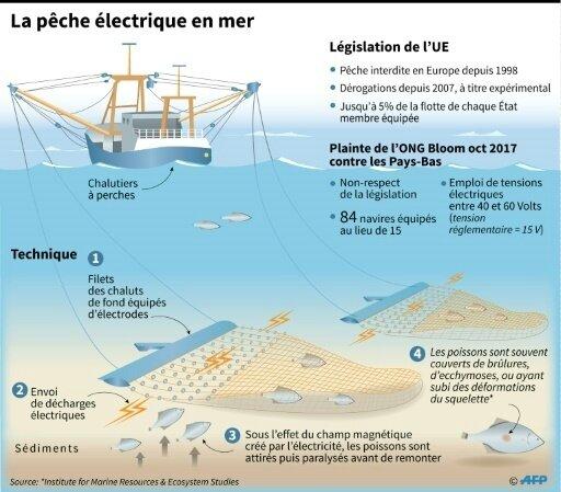pêche électrique