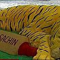 _45680384_tiger