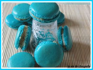 macarons bleus 001