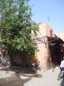 Marrakech_sept_08_152