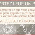 Campagne de soutien pour haïti