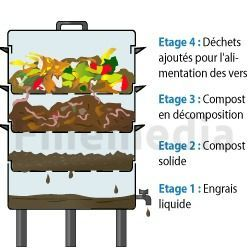 compost-lombricompostage-lombricomposteur-main-3173962