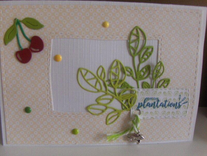 Petites_plantations__2_
