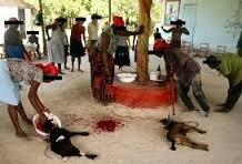 TRAVAUX OCCULTE DU GRAND MARABOUT ALLOGNON DE L'AFRIQUE