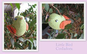 Little Bird2