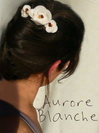 Aurore_barrette_blancheok