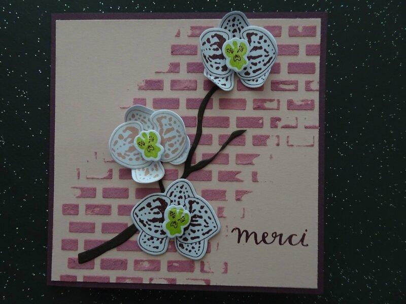 10a Carte briques colorées et branche d'orchidées