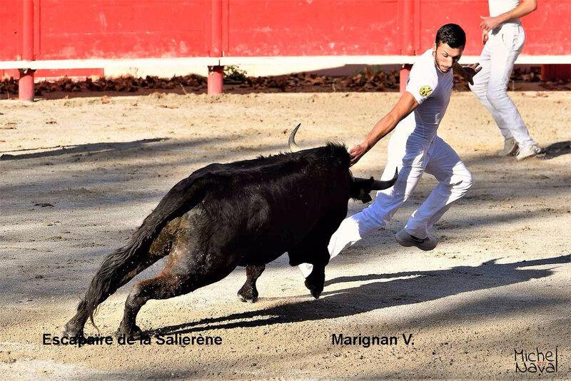 ST MARTIN DE CRAU 12