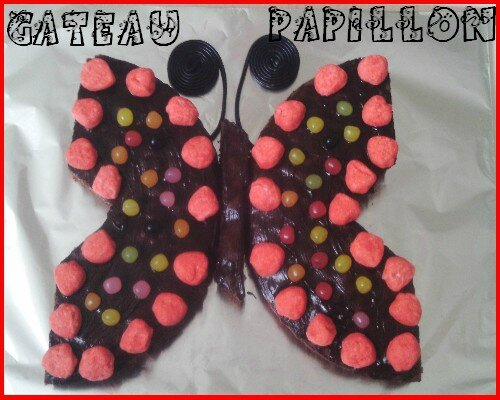 gateau-papillon1