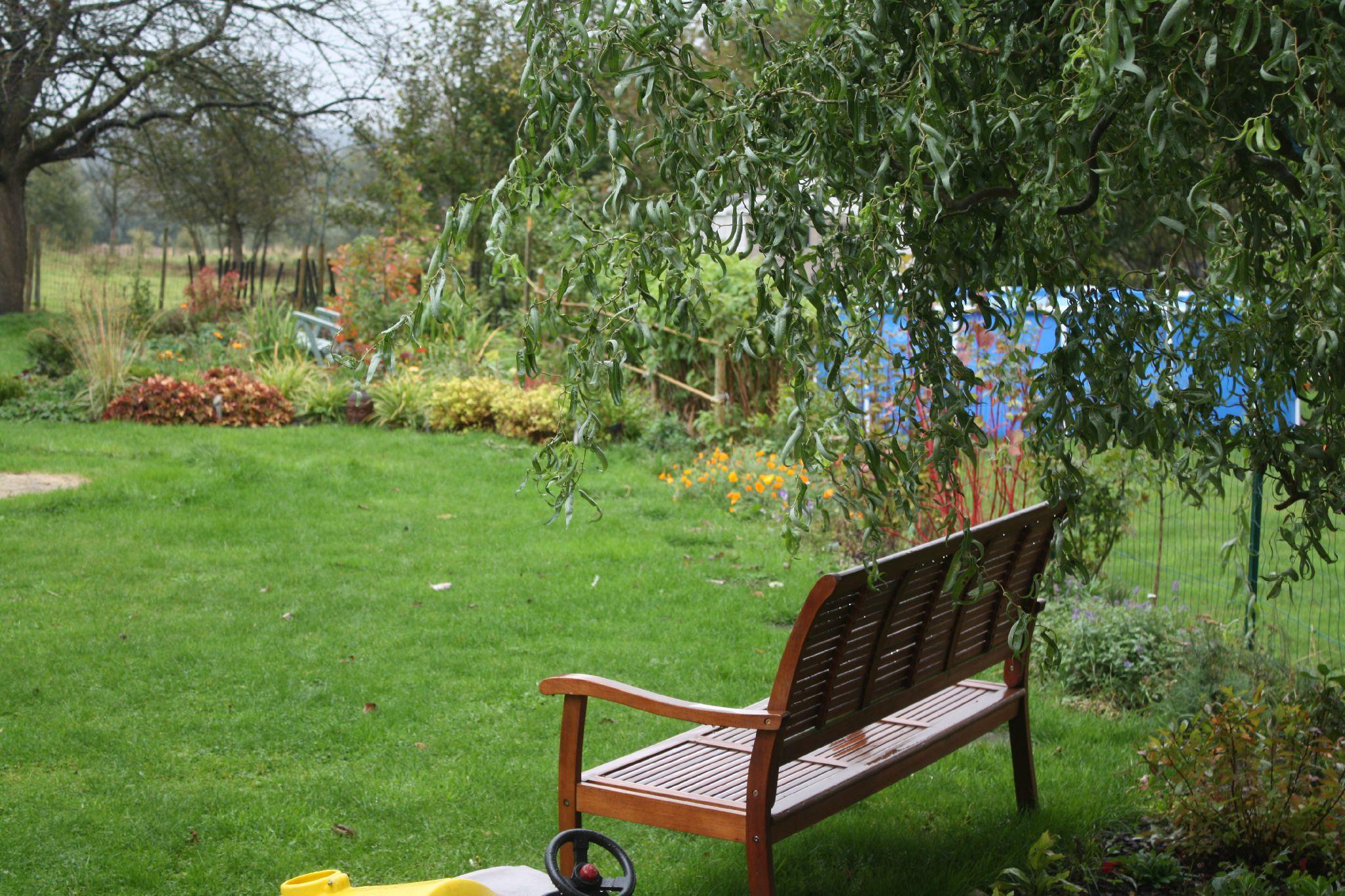 Palette d 39 automne au jardin id es jardin for Jardin et jardinage