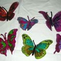MES BEAUX PAPILLONS 1 EN VENTE SUR COMMANDE