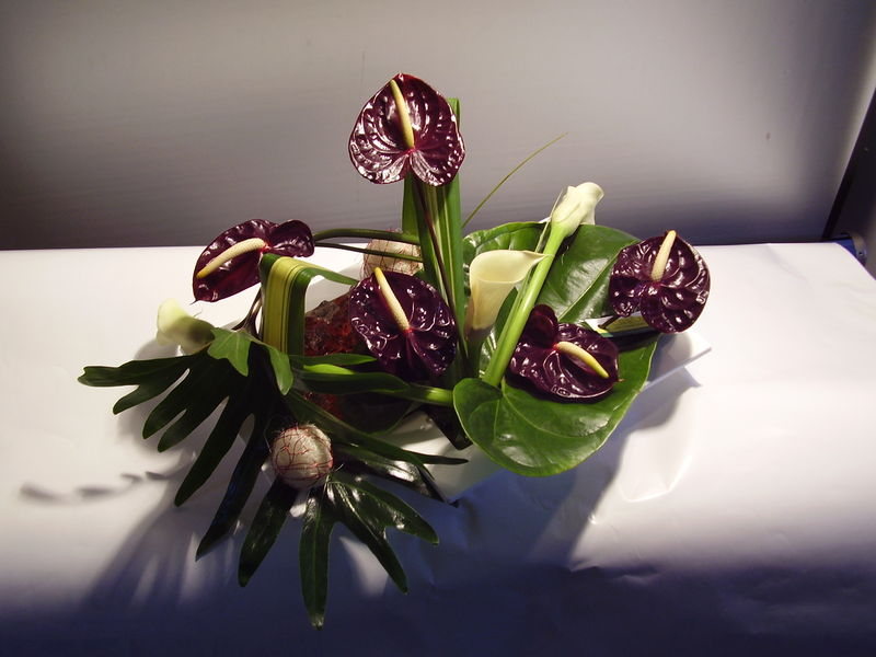 composition anthurium bordeaux photo de art flo composition de table closcrapflower. Black Bedroom Furniture Sets. Home Design Ideas