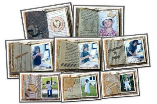 Mini-album 2013-06 - Flora - montage livret 500 pxl