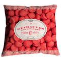 coussin-design-fraise-tagada-450