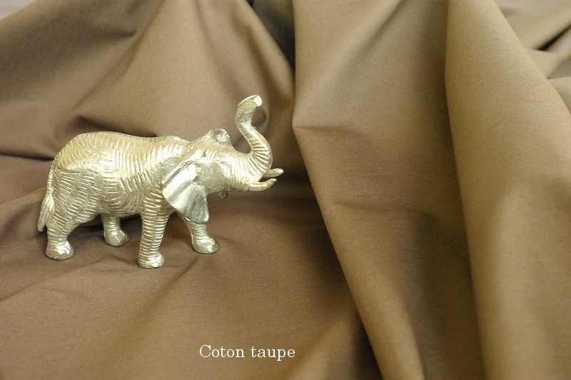 01_coton_taupe