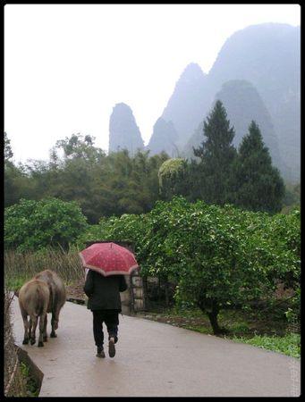 Xingping travelling de vies 09