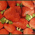 Les fraises sont de sortie