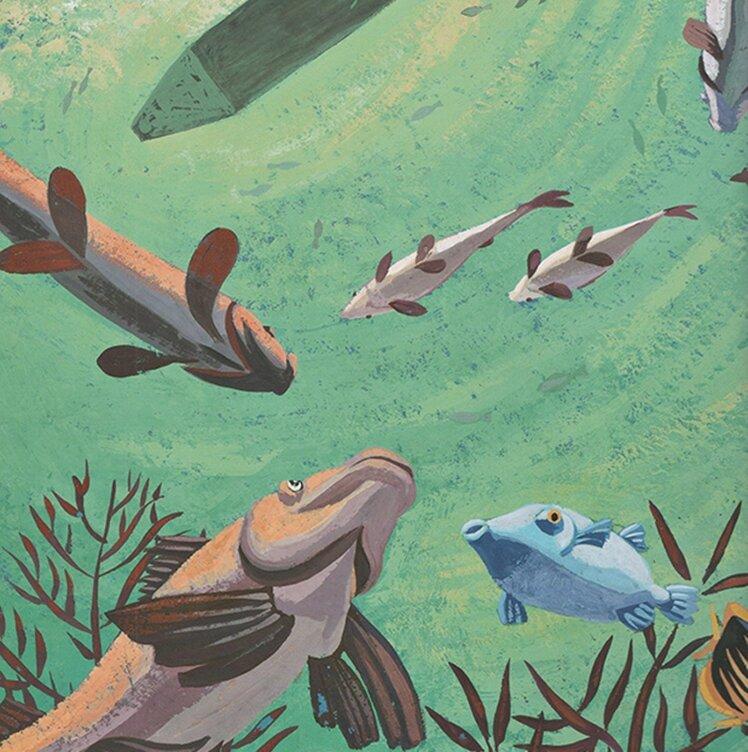 sirène des coraux - poissons