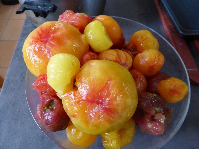 30-tomate mondées