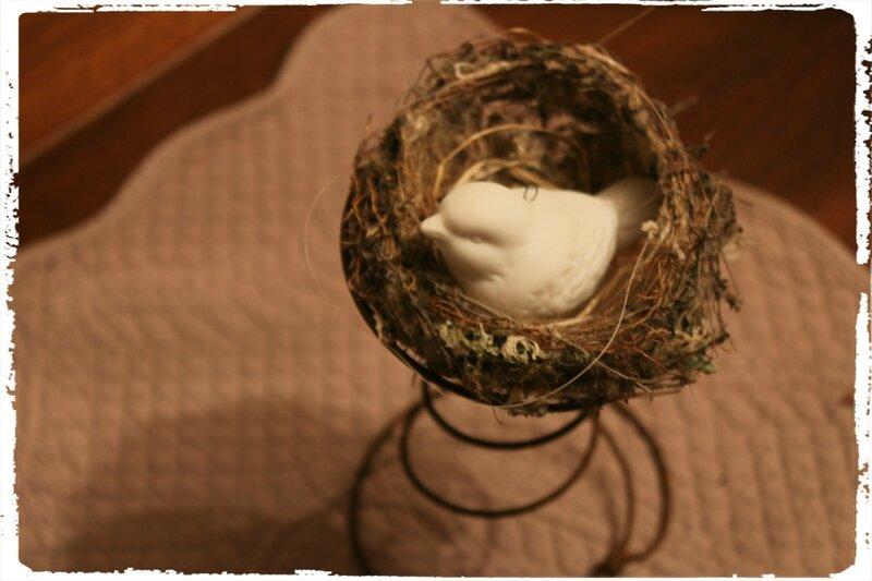 Petit nid