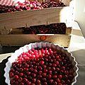 Clafoutis aux cerises, coulis de cerise et crème d'amande