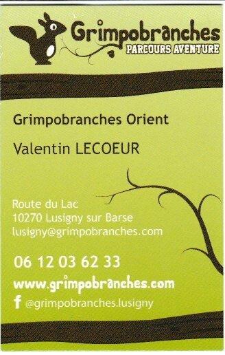Grimpobranches 001