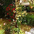 Jardin Poterie Hillen 1206165