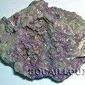 Cobaltocalcite 610