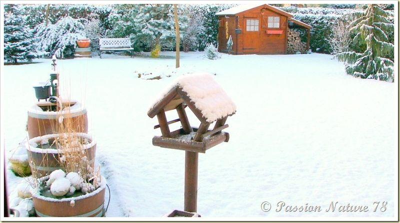 Notre jardin en hiver (1)
