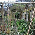 Dernière séance de l'année dans le jardin d'andré eve