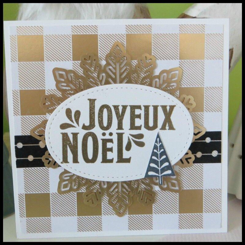 Carte Noël 2017 (29)