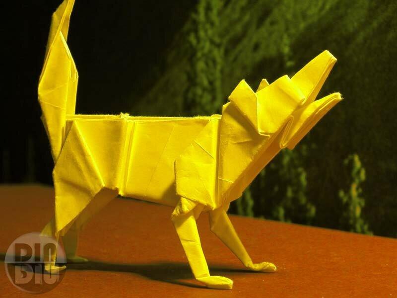 le chien de papier - un blog bio mais pas trop