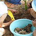 Idées pour un goûter d'anniversaire de petits archéologues !