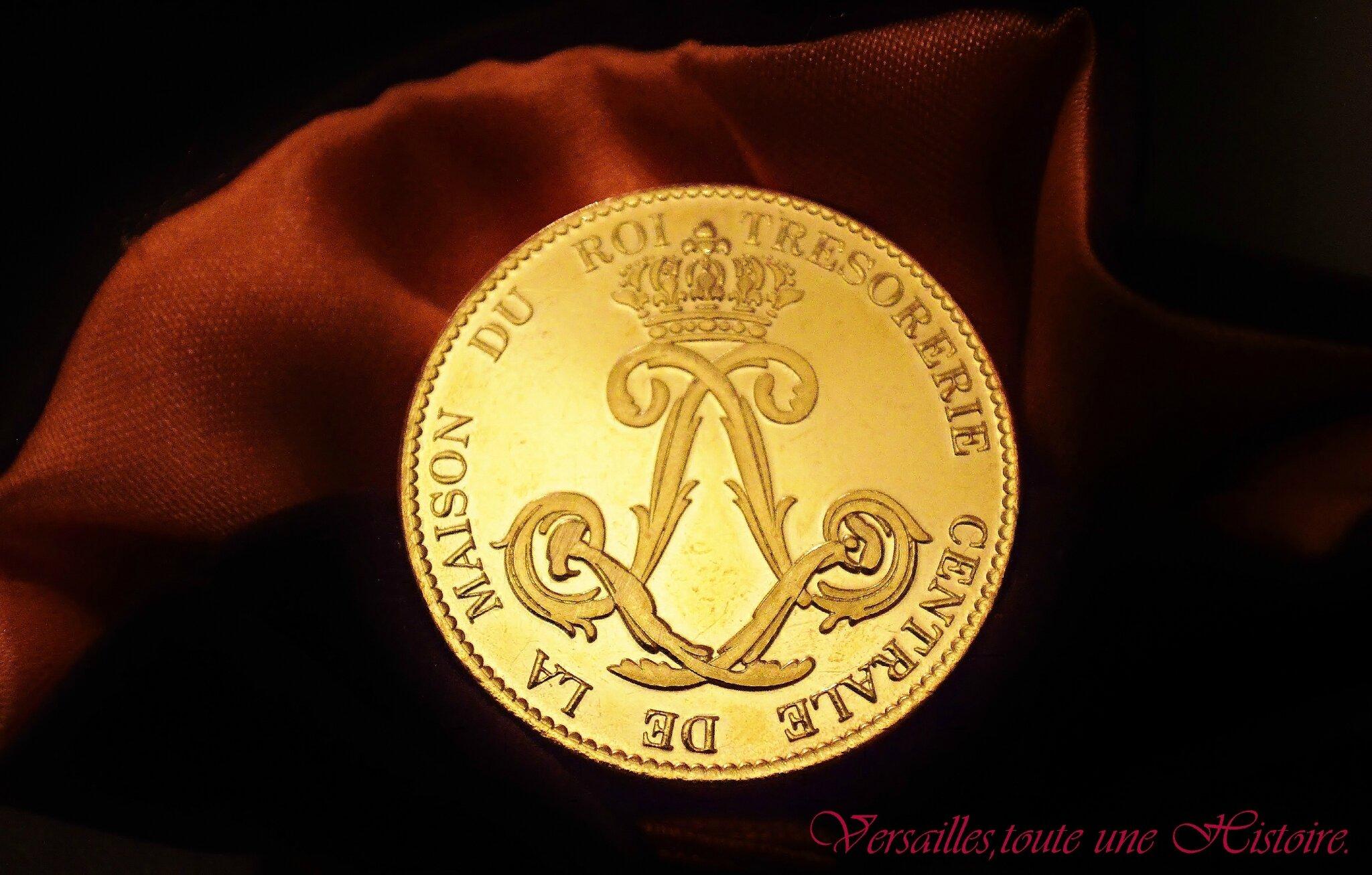 Devenir #mecene du @CVersailles pour 5 euros, c'est possible! #versailles #mecenat
