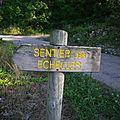 983 - Le sentier des échelles à Roquefort - Août 2013