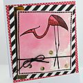 Carte flamand rose