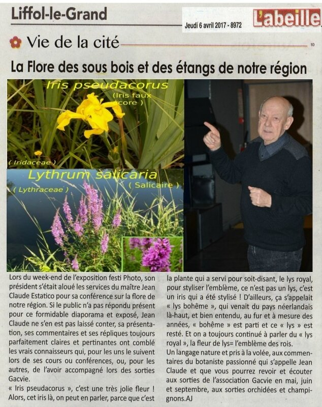 la flore avec J-Claude - article du 06 avril 2017