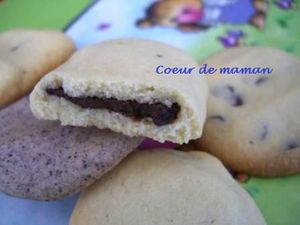 biscuits_cemoi_2