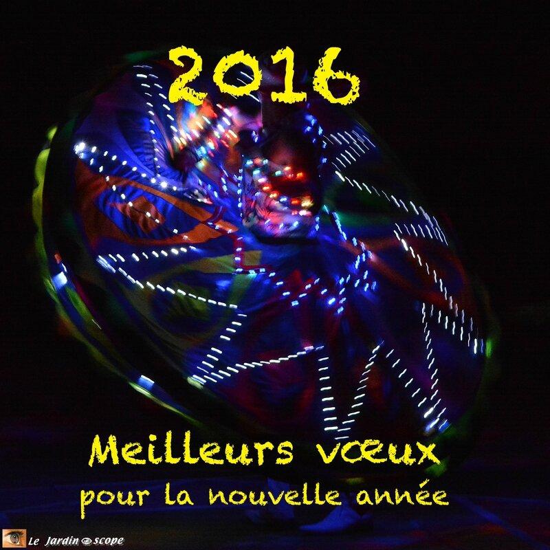 Meilleurs-vœux-2016