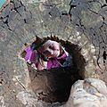Eve-Lise dans le tronc creux