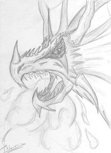 Dragon_15