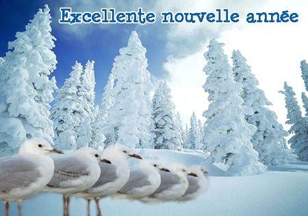 1167477993anneemouette_b