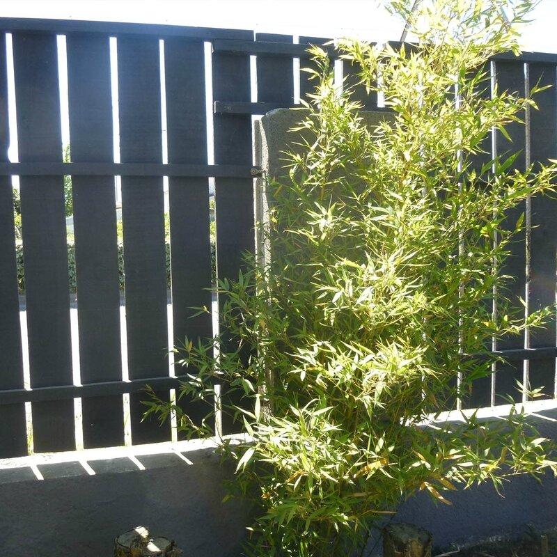 barrière bois 1