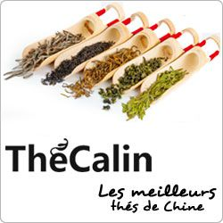 TheCalin2