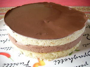 Gateau leger orange chocolat