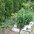 mai-2005-jardin 005