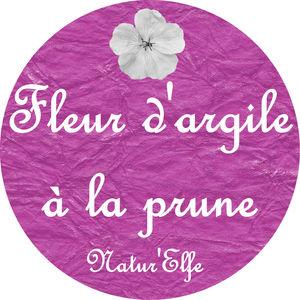 fleur_d_argile_prune2