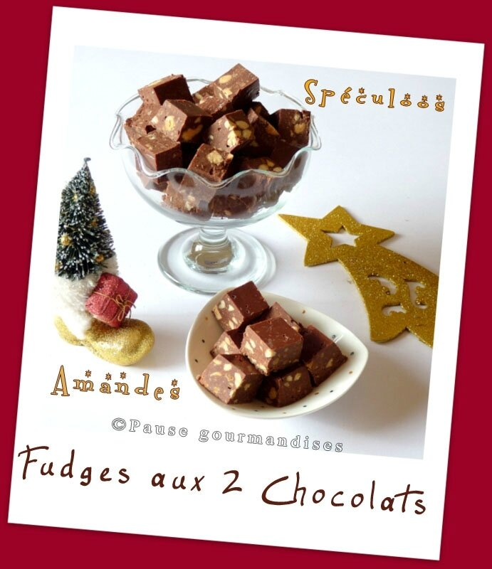 Fudges aux 2 choclats Amandes & Spéculoos (8)