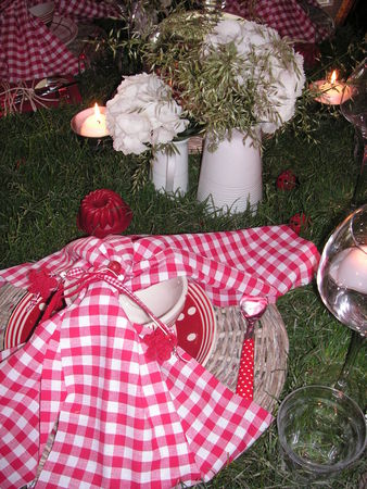 table_picnic_020