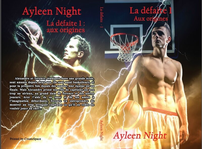 La défaite 1 : aux origines (Ayleen Night)